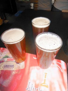 Fahren de Polen Warsawa Bier-Traveller (84)
