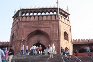 India New Delhi Bier-Traveller (18)