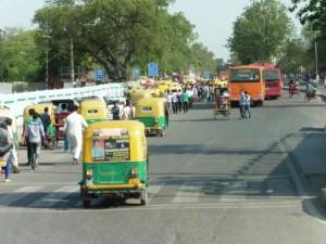 India New Delhi Bier-Traveller (43)