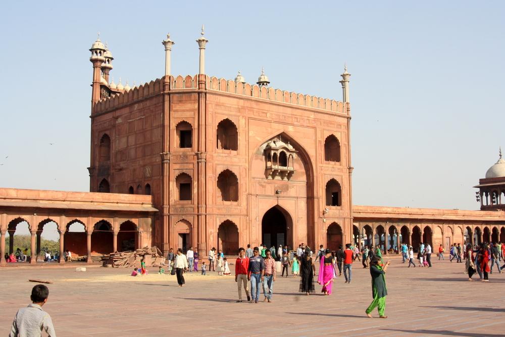India New Delhi Bier-Traveller (5)