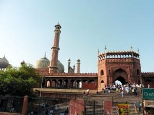 India New Delhi Bier-Traveller (55)
