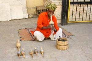 Jaipur City Palace Bier-Traveller (1)