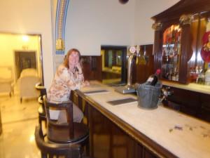 Jaipur Shahpura Hotel Bier-Traveller (10)