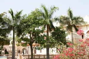 Bharatpur Laxmi Vilas Palace Curry-Heute (3)