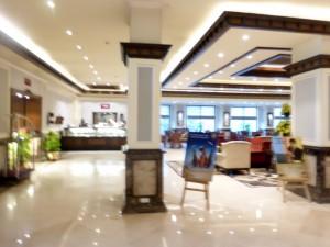 Delhi Suryaa Hotel Bier-Traveller (3)